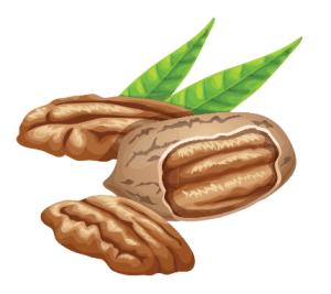 foto van noten voor extra vitamine e