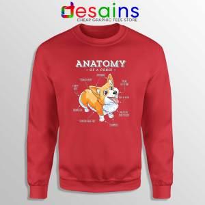 Anatomy of a Corgi Red Sweatshirt Pembroke Welsh Corgi Funny