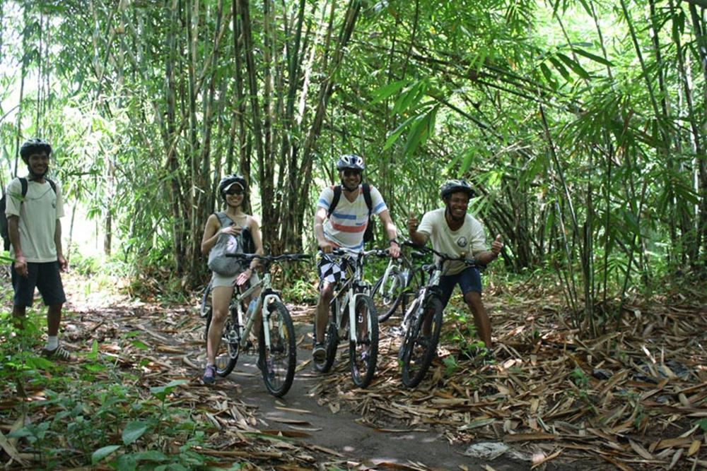 Cycling di Bali Hai - Desa Pengelipuran - Cycling di Bali Hai - Desa Pengelipuran - Hutan Bambu