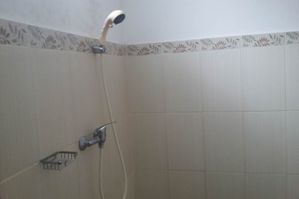 Sukur Homestay Desa Penglipuran Bangli Bali - Shower