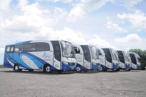 Transport Service - Bus 05