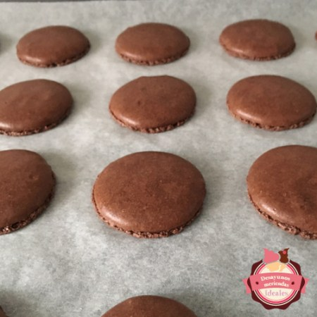 macaron de chocolate reposando