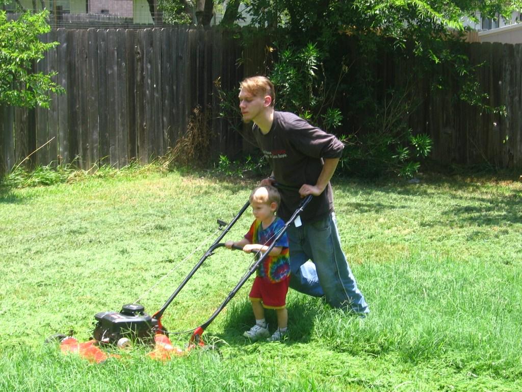 tondeuse a gazon lawn boy
