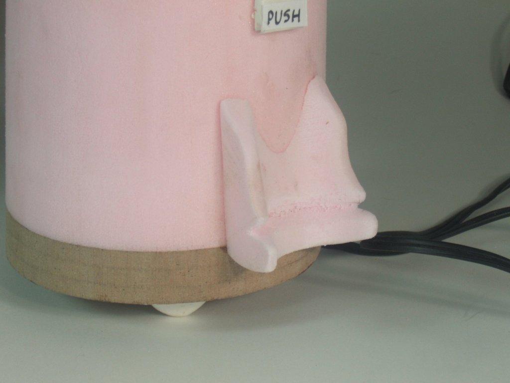 nettoyeur à vapeur