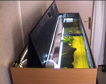 Acheter aquarium pas cher