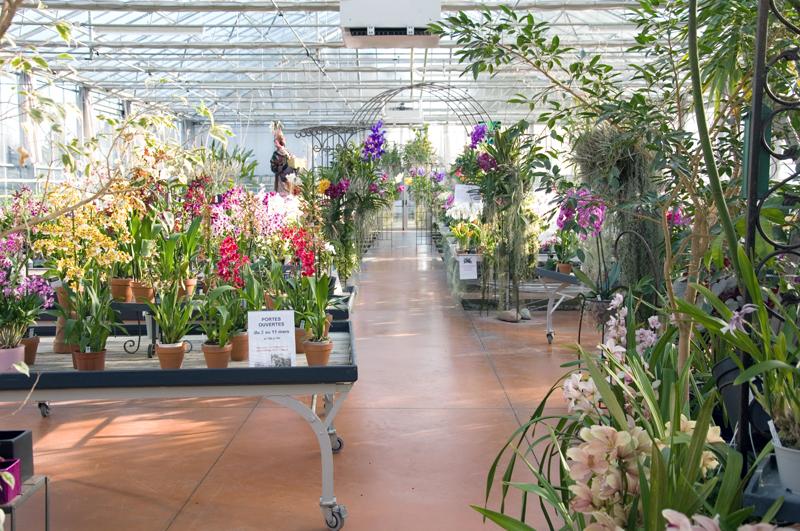 Acheter serre jardin pas cher