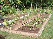 serre de jardin pas cher