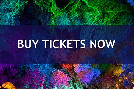 Buy Tickets Now button