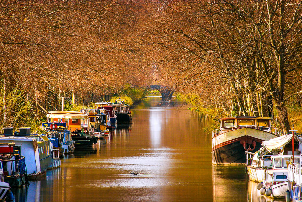 Agde, Automne, Canal du midi, Occitanie, Patrimoine, Saisons, South of france, Sud de France