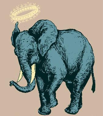 elephant_scrojo