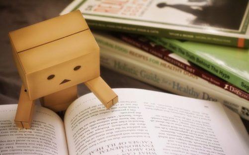 danbo_book_reading