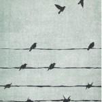 Réflexion sur la liberté et quelques livres