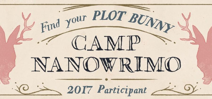 Camp-2017-Participant