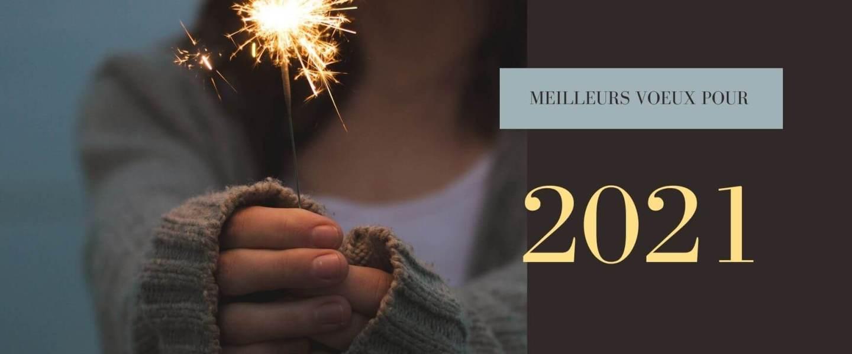Bilan 2020 et projets d'écriture et de blogging 2021