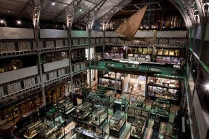 Oxford Pitt Rivers museo en Oxford