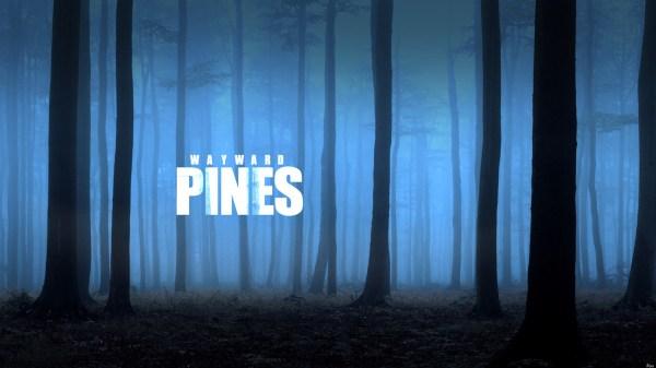 ob_bd43cd_pines
