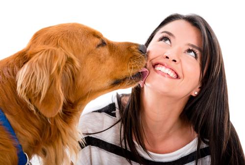 Su boca tiene tantas o más bacterias que la tuya y además las suyas son de diferente naturaleza