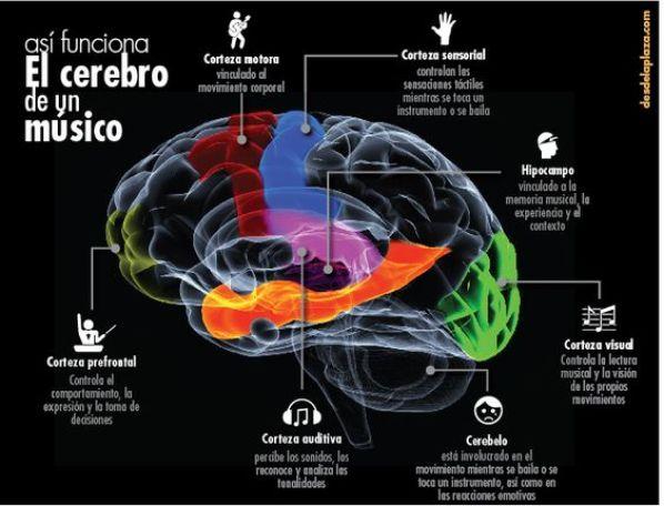 cerebro-musico