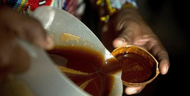 ayahuasca-bebida