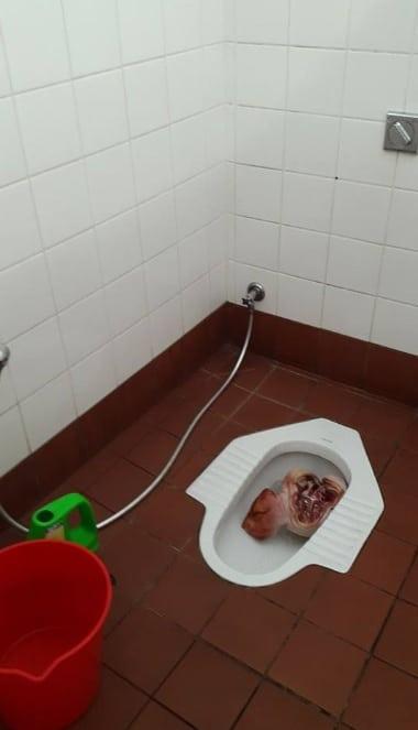 Tête de porc dans les toilettes d'une mosquée