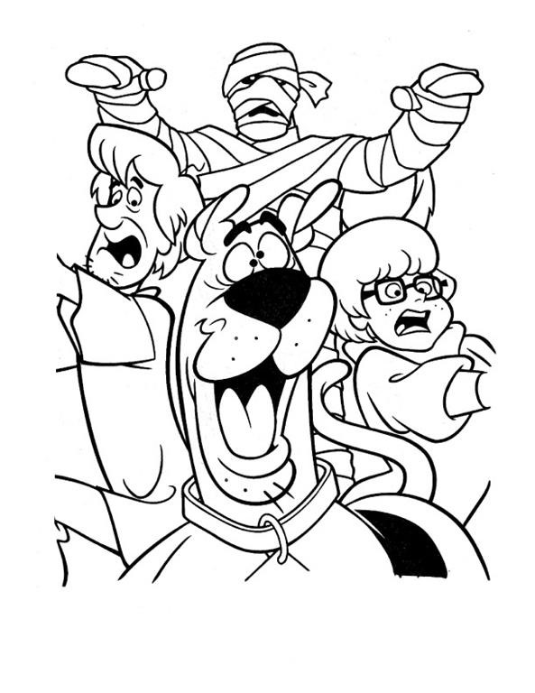 Scooby Doo Salsicha Fred Velma E Daphne Desenhos Para
