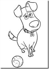 pets_vida_secreta_dos_bichos_desenhos_para_colorir_pintar_imprimir (16)
