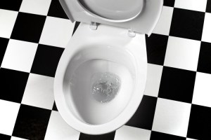 Por Que o Vaso Sanitário Entope?
