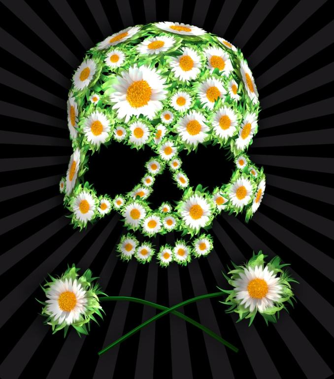 The top shape of a skull made of white flowers with yellow centers. Two full flowers crossed beneath, like bones in a skull and crossbones.