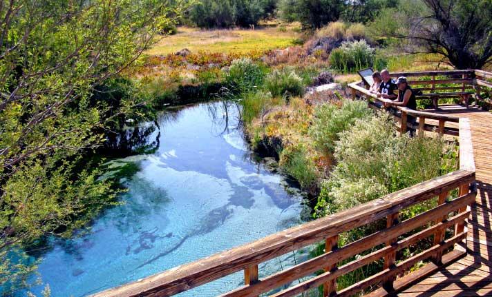 Ash Meadows National Wildlife Refuge DesertUSA