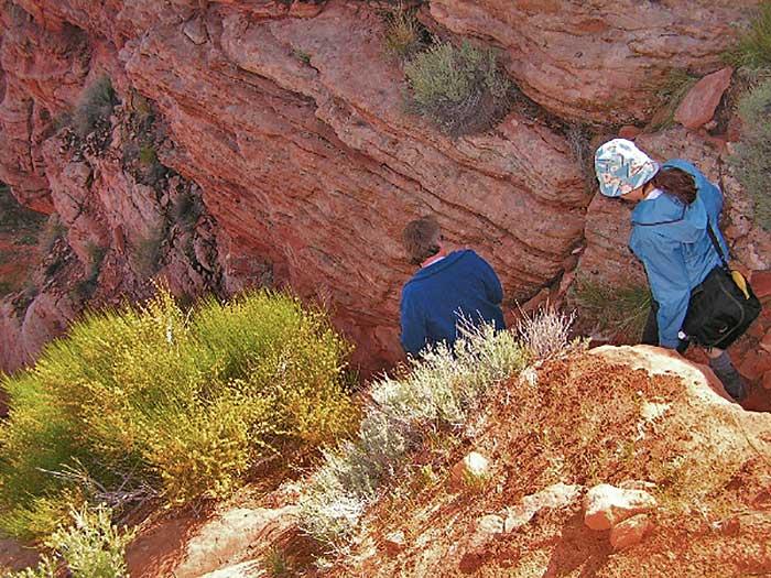 Hiking Canyon X  Page AZ  DesertUSA