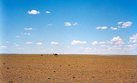 the gobi desert location