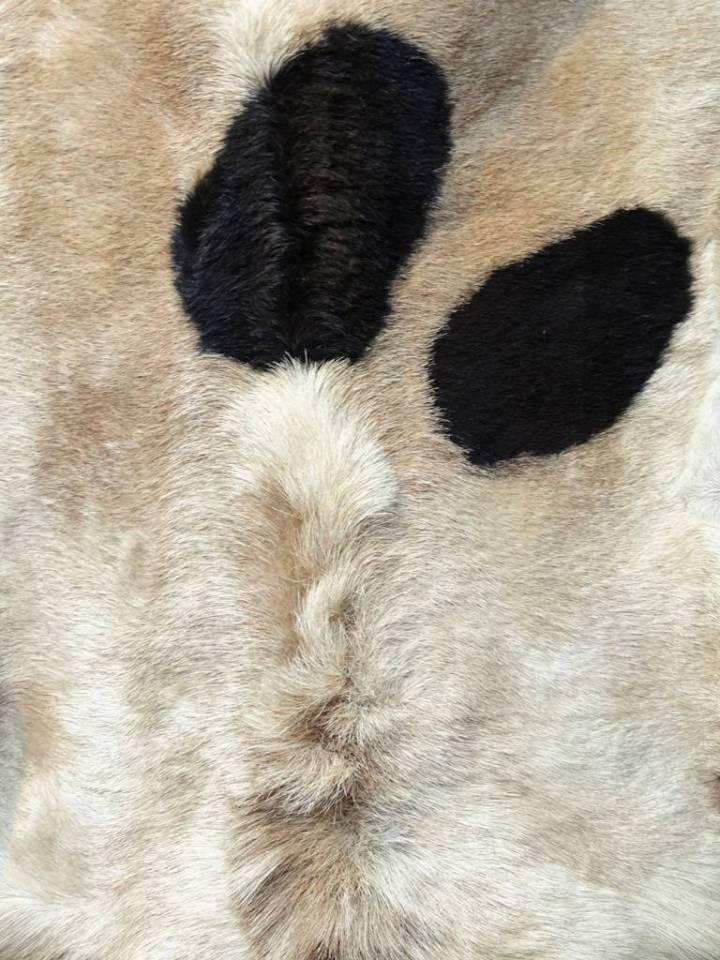 Peau de chèvre