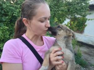 Léa - chiens adoptés en 2013