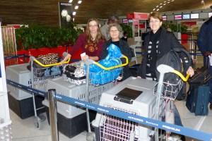 Irina, Danielle et Adina (20 octobre 2013) - 34 chiens de Bucarest