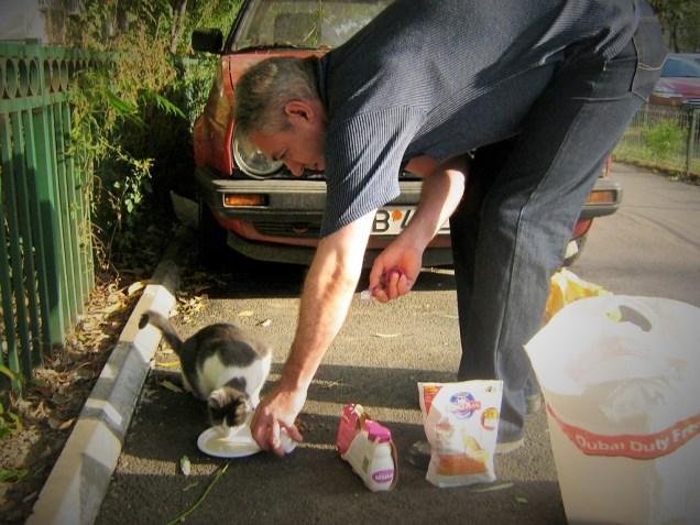 Avedis nourrissant les chats du quartier (octobre 2010)