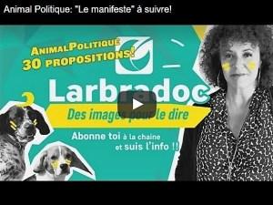 """Animal Politique: """"Le manifeste"""" à suivre!"""""""
