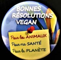 Des militants vegans à Auxerre