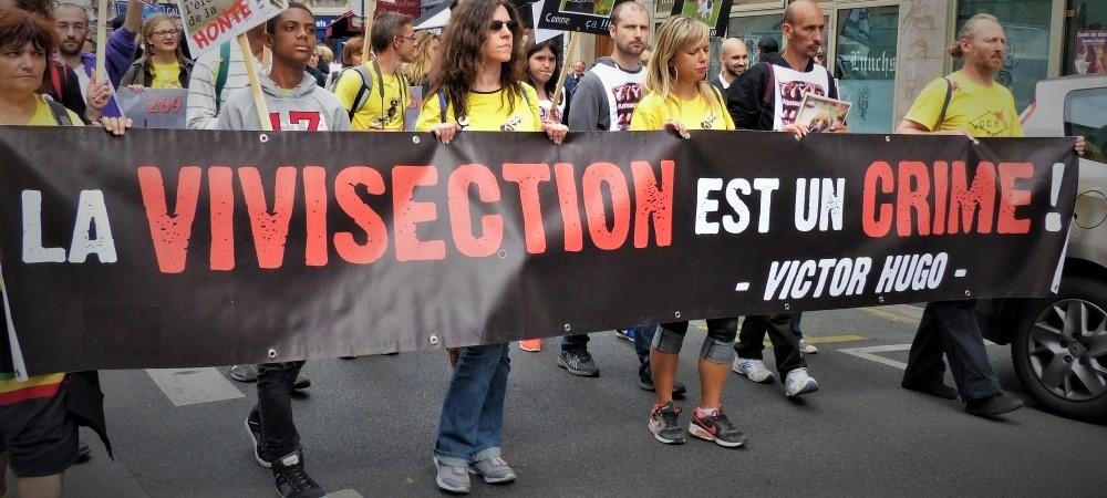 Vivisection : en finir avec l'expérimentation animale - Actions militantes