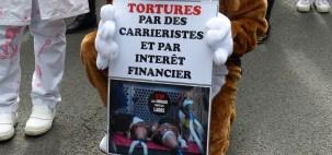 Manifestation unitaire contre la vivisection septembre 2015