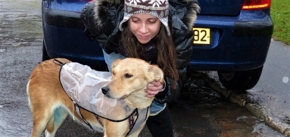 Mara rencontre Anne à Senlis_décembre 2012 (1900x901)