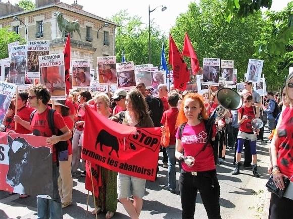 Manifestations fermeture des abattoirs