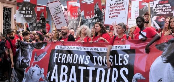 Marche pour la fermeture des abattoirs 2019