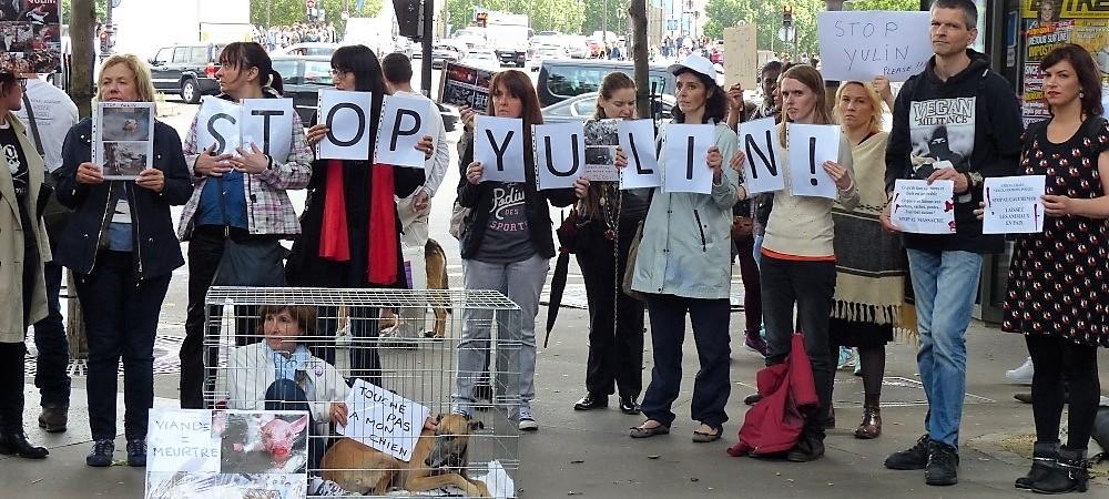 Viande de chien et de chat en Asie - Actions militantes