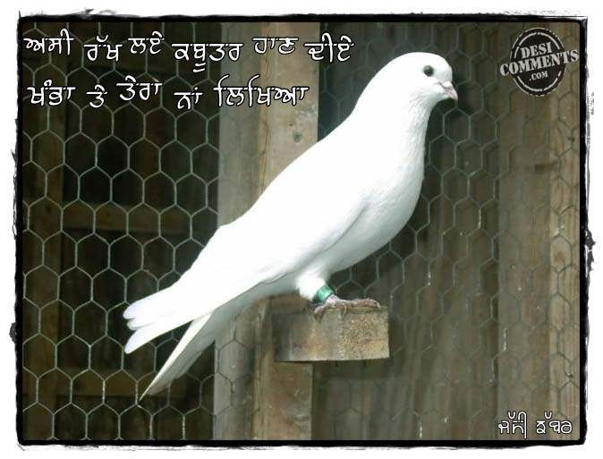 Love Wallpaper With Quotes In Hindi Asi Rakh Laye Kabootar Haan Diye Desicomments Com