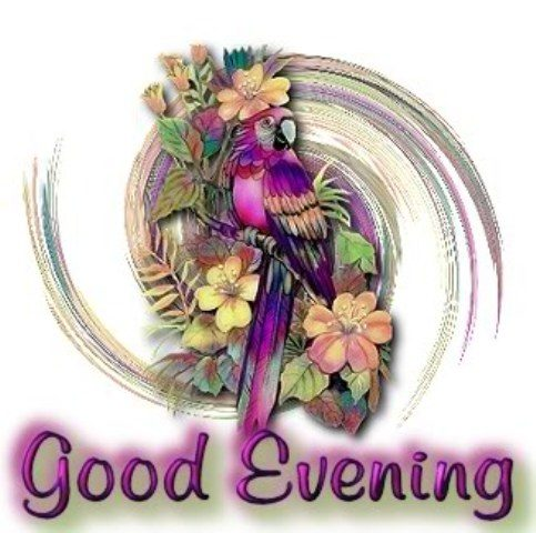 Gud Morning Cute Wallpapers Good Evening Everyone Desicomments Com
