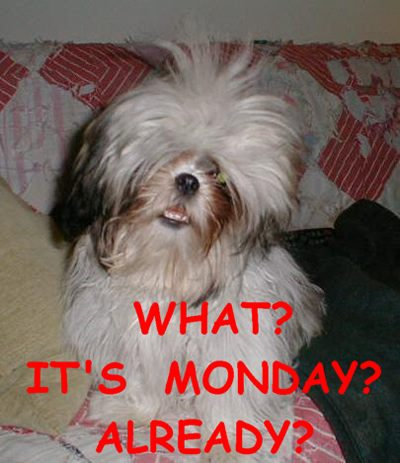What Its Monday Already