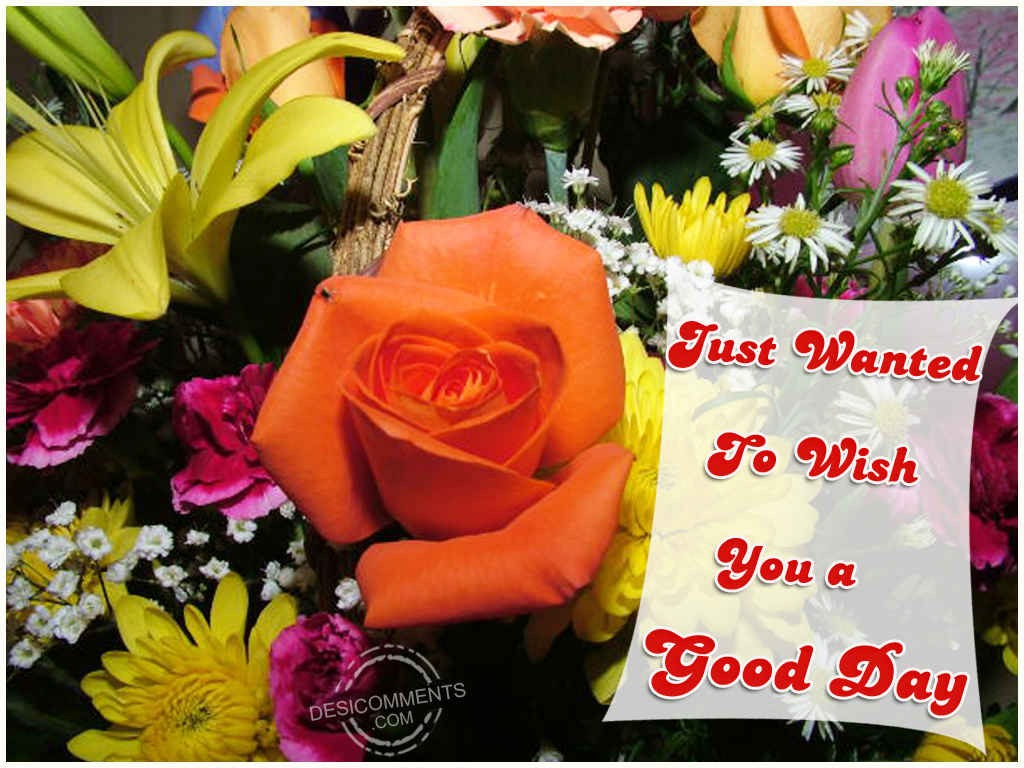 Lovely Wallpapers With Quotes In Hindi Wishing You A Good Day Desicomments Com