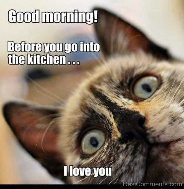 Coffee Morning Monday Funny Memes