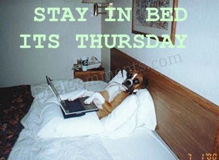 Stay In Bed Its Thursday  DesiCommentscom