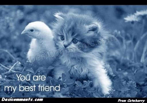 Bff Quotes Wallpapers You Are My Best Friend Desicomments Com